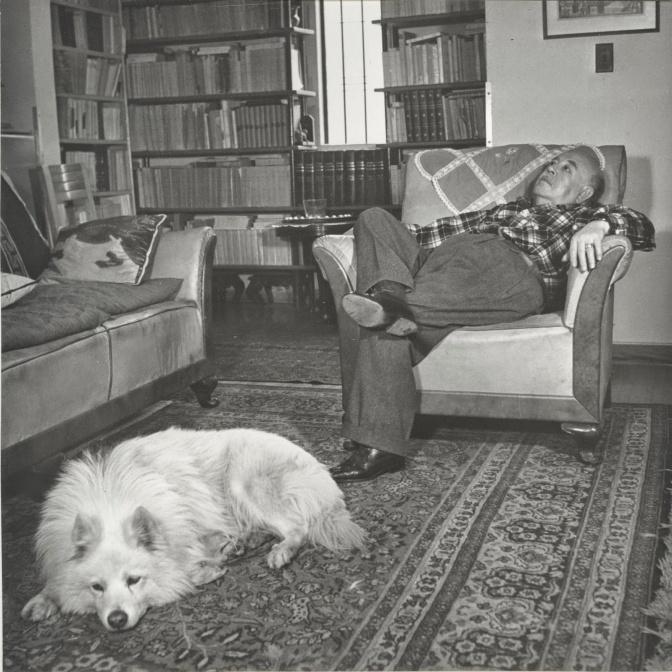 Érase un perro. Por Alfonso Reyes